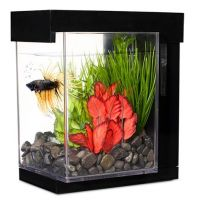 Marina Betta Kit EZ Care Style 3.78L