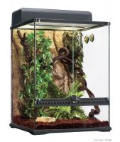 PT2662 Exo Terra Habitat Kit Rainforest - Medium